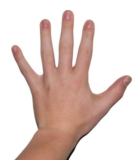 ROTI five - photo hand