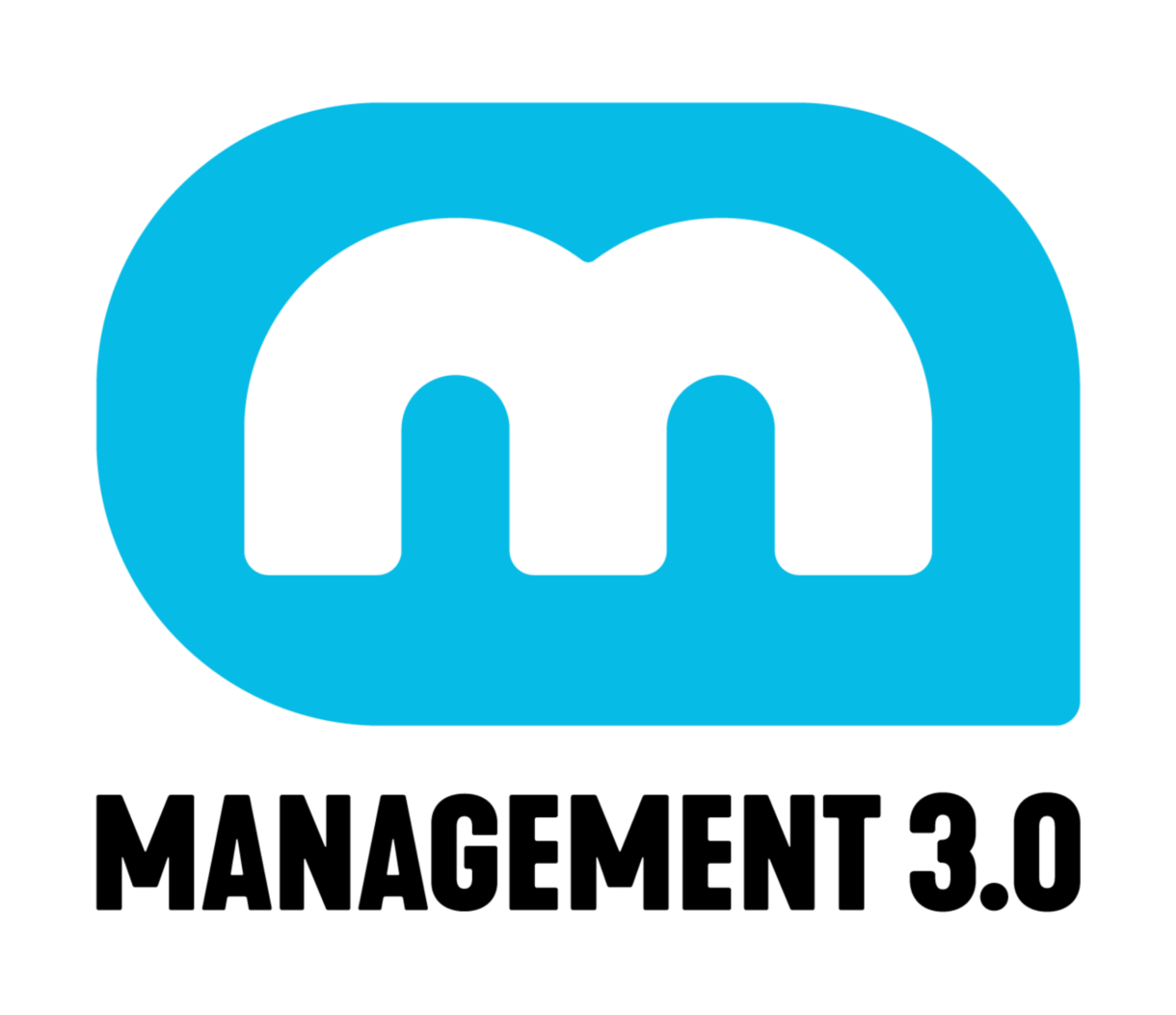 management-3-0-logo